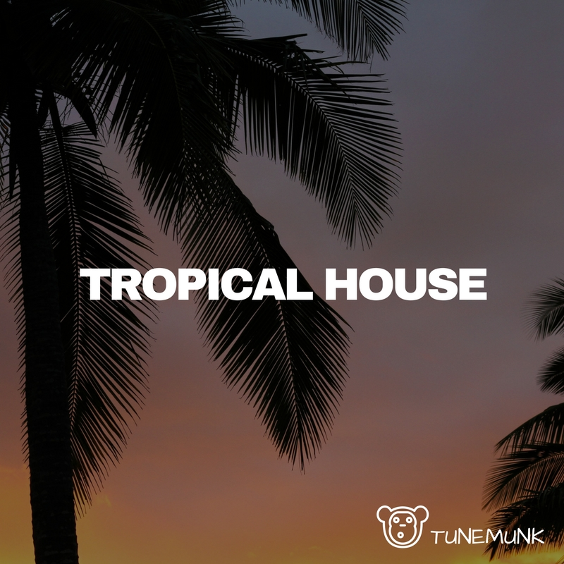 Tropical house spotify playlist on tunemunk for House music singers